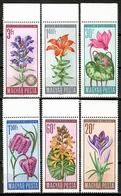 Hungary 1966 Hungría / Flowers MNH Flores Blumen Fleurs / Cu15611  29-36 - Vegetales
