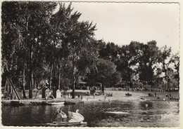MONTRICHARD La Plage Et Les Jeux Sur Le Cher.Carte écrite En 1961 - Montrichard