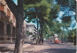 PESCARA - PINETA - VIALE D'ANNUNZIO - AUTO D'EPOCA CARS VOITURES: FIAT 850 COUPE' - NON VIAGGIATA - Pescara