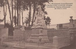 T4  - 25 - ARC SOUS CICON - Monument Commémoratif Aux Morts Tombés Au Champ D'honneur De 1914 à 1918 - Frankrijk