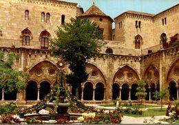 TARRAGONA  CATHEDRALE  JARDIN DANS LE CLOITRE - Tarragona