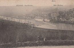 T4  - 25 - AVANNE - Lot De 2 Cartes - Le Pont De La Planoise Et Vue Générale - Frankrijk