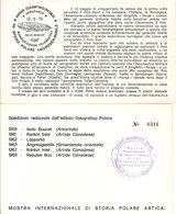 (St.Post.).Storia Postale Artica.Lotto 2 Cartoline (6-a20) - Eventi E Commemorazioni