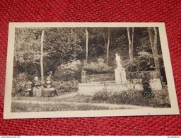 CARNIERES  -  Asile Du Sacré-Coeur - Statue De Saint Joseph Dans Le Parc - Morlanwelz