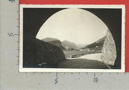CARTOLINA VG ITALIA - TORBOLE (TN) - Panorama - Lago Di Garda - 9 X 14 - 1941 - Trento
