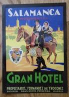 Etiquette De Bagage Gran Hotel Princesa Madrid - SALAMANCA Monumental - Proprietarios F. De Troconiz - Espagne