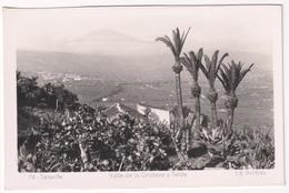 Tenerife - Valle De La Orotava Y Teide - Tenerife