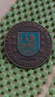 Ehrenzeichen - Für Langjährige Treue - Schladming - Pin's & Anstecknadeln