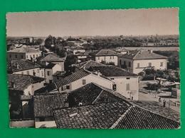 Cartolina Codifiume ( Ferrara ) - Panorama - 1979 - Ferrara