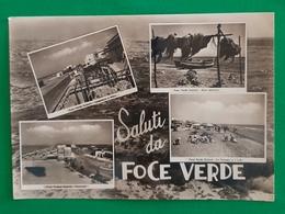 Cartolina Saluti Da Foce Verde - Zona Pescatori - Panorama - 1961 - Latina