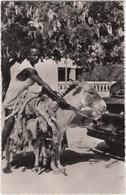 Gao - Soudan - Transport De La Viande - & Donkey - Sudan