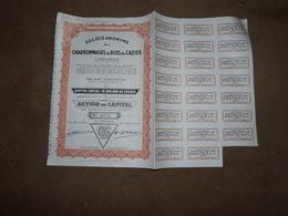 CB16 Action Charbonnages Du Bois Du Cazier 1944 Marcinelle - Actions & Titres
