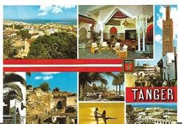 Cp-Maroc- Tanger- Divers Aspects ( écrite En 1986) - Tanger