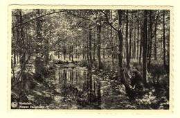 A1532[Postkaart] Kasterlee / Nieuwe Duivelskuil (Nels Bromurite, A. Beersmans) [bos De Kempen Natuur] - Kasterlee