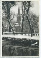 Beloeil - Le Parc De Beloeil Sous La Neige - Sneeuw In Het Park Te Beloeil - Editions De Beloeil - Beloeil