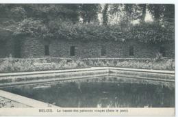 Beloeil - Le Bassin Des Poissons Rouges (dans Le Parc) - Edit. G. Delcourt, Beloeil - 1913 - Beloeil