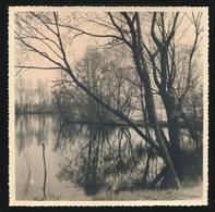 OVERMERE  FOTO  18 X 18 CM -  DONKMEER - Berlare