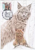 Belarus 2020 Lynx Cat Cats Maximum Card Fauna - Belarus