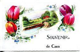 N°1808 T -cpsm Souvenir De Caen - Caen