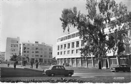 MAROC Morocco - PORT LYAUTEY ( KENITRA ) Place Albert 1er - Jolie CPSM Dentelée N/B Format CPA - Afrique Maghreb - Marruecos