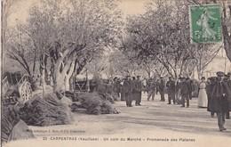 84 / CARPENTRAS / UN COIN DU MARCHE / PROMENADE DES PLATANES - Carpentras