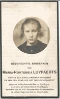 LUYPAERTS Maria-Hortensia °1907 Rijkevorsel + 1918 Ukkel  Doodsprentje Image Mortuaire Funeral Card - Religion & Esotérisme