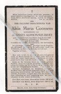 ALIDA MARIA GOOSSENS ° St.JORIS -TEN-DISTEL 1882 + THILDONCK 1927 / JOANNES ALPHONSIUS BIDÉE - Devotion Images