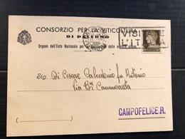 CONSORZIO PER LA VITICOLTURA DI PALERMO ORGANO DELL'ENTE NAZIONALE PER LA DISTILLAZIONE DELLE MATERIE VINOSE 1939  VINO - Palermo