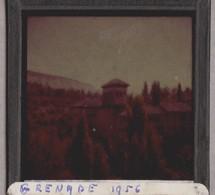 Grenade, Plaque En Verre Photo 1956. - Glasdias