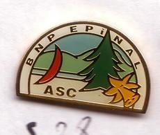 S38 Pin's Banque Bank BNP Épinal JONQUILLE SAPIN Planche A Voile Vosges Achat Immédiat - Banken