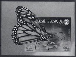 Belgium 2019 Black & White Extract, Animals, Pollinators, Monarch Butterfly (Danaus Plexippus) On Summer Lilac, Monarque - Papillons
