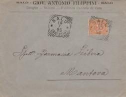 LETTERA 1895 C.20 TIMBRO SALO'  (KX101 - Storia Postale