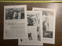 1913 JST AU SECOURS DE NOS FRERES INFERIEURS ALBERT ROBIN QUENU LABORATOIRE SALLE CLAUDE BERNARD TORTURES VIVISECTION - Alte Papiere