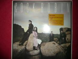 LP33 N°1365 - COCK ROBIN - COMPILATION 9 TITRES ELECTRO SYNTHE POP - Disco & Pop