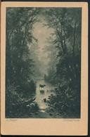 °°° 17328 - GERMANY - ILL. A. RIEGER - WALDESFRIEDE °°° - Illustratori & Fotografie