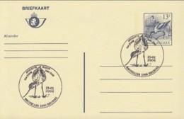 Doc 089 - Avocette / Kluut (Entier) - 1985-.. Oiseaux (Buzin)