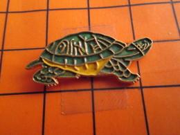 0120 Pin's Pins / Beau Et Rare  / THEME ANIMAUX / TORTUE VERTE ET JAUNE - Animaux
