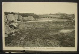 CP. 2989. Obourg. L'étang De La Carrière Vandenheuvel - Mons
