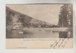 CPA PIONNIERE SCHIRMECK (Bas Rhin) Lot N°10012025 - Sagemuhle Salm Mit Forellenteivh U. Waldbahn - Schirmeck