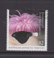 Australian Antarctic Territory ASC 241 2017 East Antarctic Deep Sea Creatures,$ 2.00 Medusa,used, - Australian Antarctic Territory (AAT)