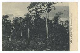 Kamerun Victoria Botanischer Garten Postkarte Weltpostverein Care-Postale Union - Camerun