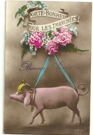 Bonne Annee Porte Bonheur Pour Les Tranchees Cochon Casque Medaille Fleurs Rex 584 - Nouvel An