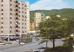 TRIESTE - ROTONDA DEL BOSCHETTO - FILOBUS / BUS / TRAM - 1969 - Trieste