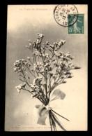 44 - LA FLORE DE BRETAGNE - FLEURS DE MARAIS - EDITEUR C. FODERE LE POULIGUEN - Le Pouliguen