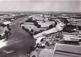49 - Maine Et Loire -  CHALONNES Sur LOIRE - Le Pont Suspendu Du Grand Bras - Vue Aerienne - Chalonnes Sur Loire