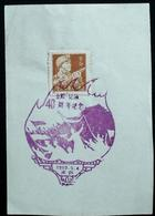 CHINA  CHINE CINA 1959 Commemorative Postmark  纪念邮戳 - 14 - 1949 - ... République Populaire