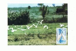 01 - VILLARS Les DOMBES - Parc Ornithologique, Aigrette Garzette, Cachet 1er Jour  - 195 - Villars-les-Dombes
