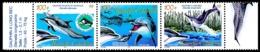 NOUV.-CALEDONIE 2005 - Yv. 941 à 943 **  Cote= 7,50 EUR - Faune Marine Cétacés Dauphins (3 Val Se Tenant) ..Réf.NCE25574 - New Caledonia