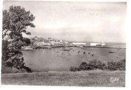 REF 455 : CPSM 29 DOUARNENEZ Le Port - Douarnenez