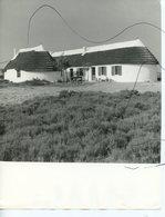 Photographie Identifiée . Mas Camarguais - Luoghi
